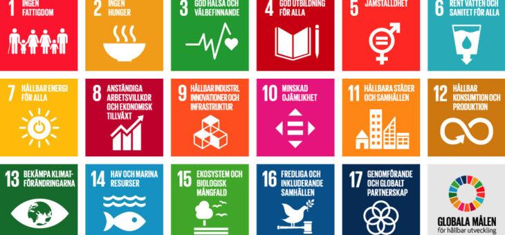 Hållbar cirkulär och biobaserad verksamhetsutveckling